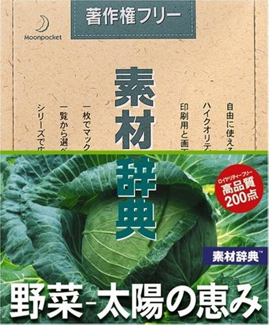受け取る定規グラマー素材辞典 Vol.135 野菜~太陽の恵み編