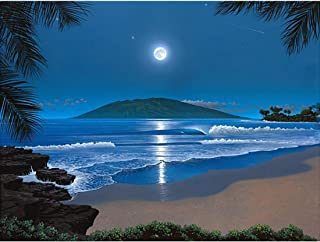 DIY 5D Diamond Painting by Number Kits, Crystal Rhinestone Embroidery Paint with Diamonds, Full Drill Canvas Art Picture for Home Wall Decor(Moonlight Beach-Blue-1, 11.81x15.74in