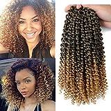 6Pcs Bohemian Curl Crochet Braids Hair 120G Per Pack Kanekalon Braiding Hair 10Inch Ombre Bohemain Curly Synthetic hair
