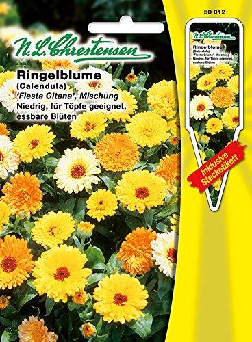 Ringelblume 'Fieste Gitana' Mischung , niedrig, für Töpfe geeignet, essbare Blüten ( mit Stecketiketten) 'Calendula officinalis '