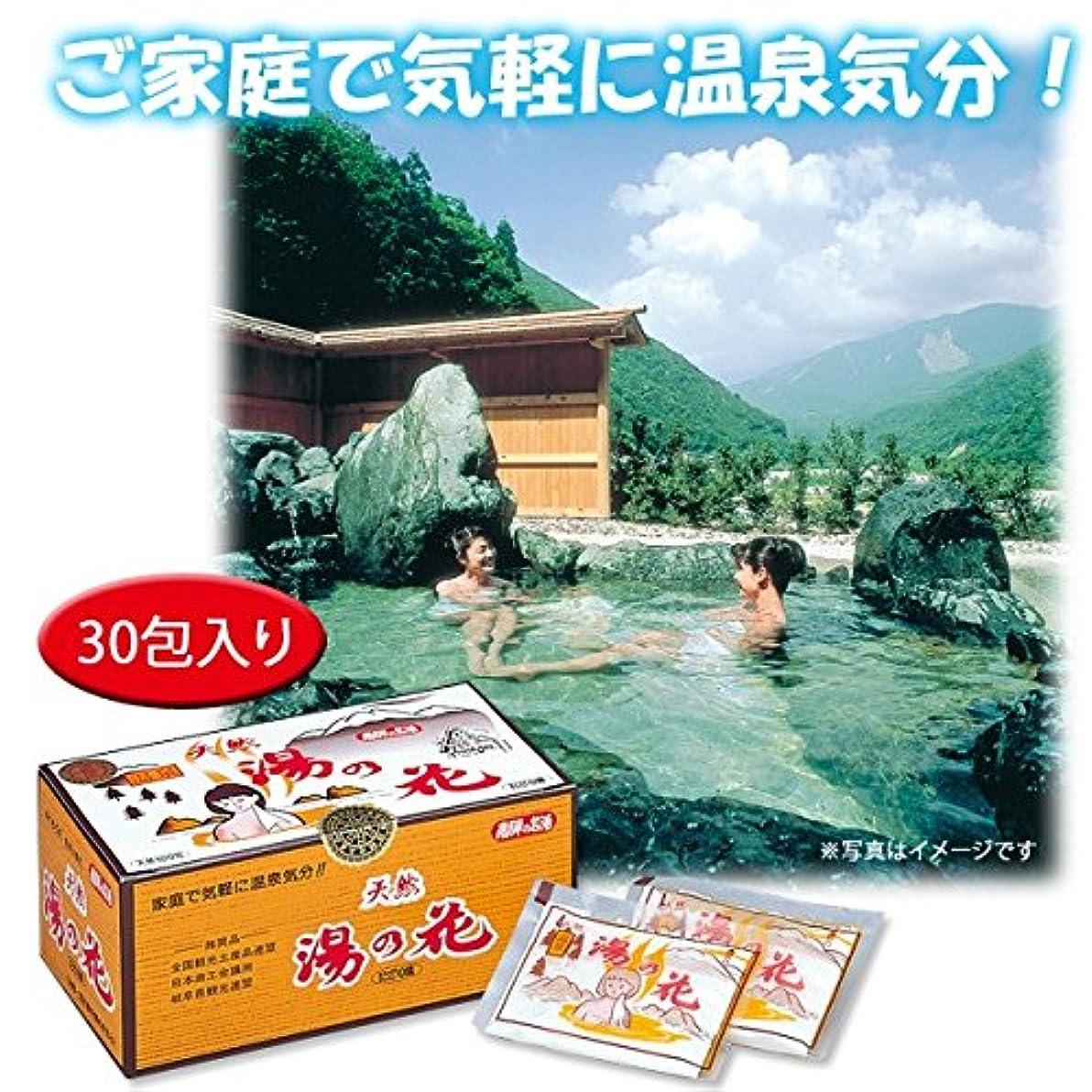 ぼろインフラ置き場天然湯の花(30包入り)
