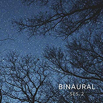 Binaural, Deep Sleep Binaural Beats Session 2