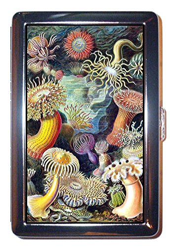 Steampunk Sea Anemone Colorful Victorian Art: Stainless Steel ID or Cigarettes Case (King Size or 100mm)