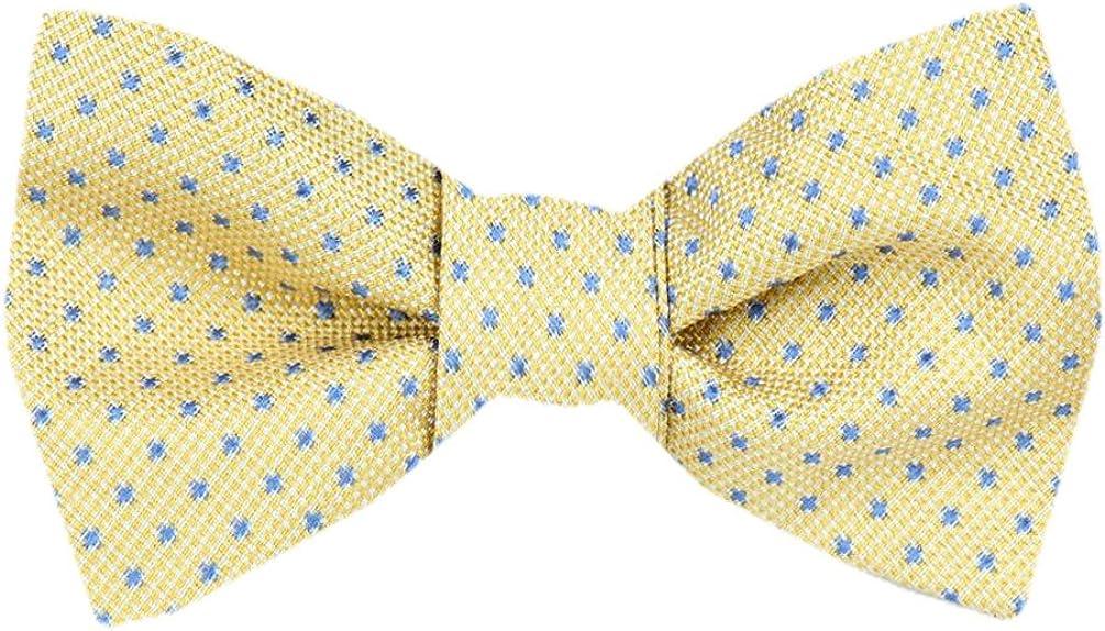 FBTZ-1624 - Mens Silk Bow Ties