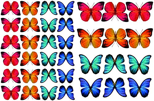 Stickers4 Vlinder raamstickers om te beschermen tegen vogelaanvaring - 36 prachtige vlinderglas stickers, dubbelzijdig en zelfklevend om te beschermen tegen botsingen met vogels