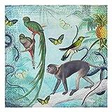Forex Fine Art Print - Colonial Style Collage - Monkeys Birds Paradise 75x75cm