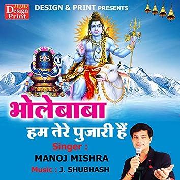 Bhole Baba Hum Tere Pujari Hai - Single