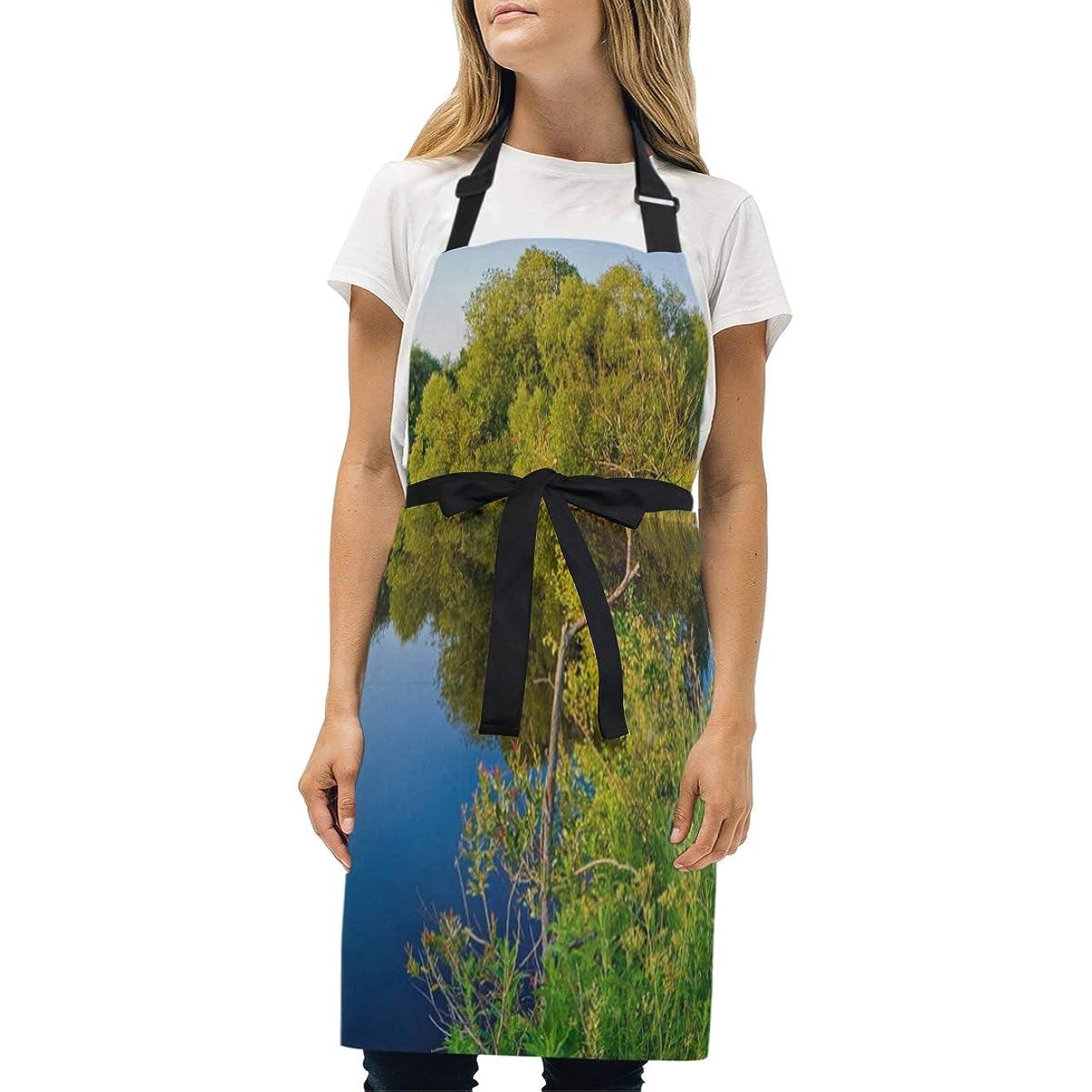 HJudge Womens Aprons Swan Reflection Ramya Kitchen Bib Aprons with Pockets Adjustable Buckle on Neck