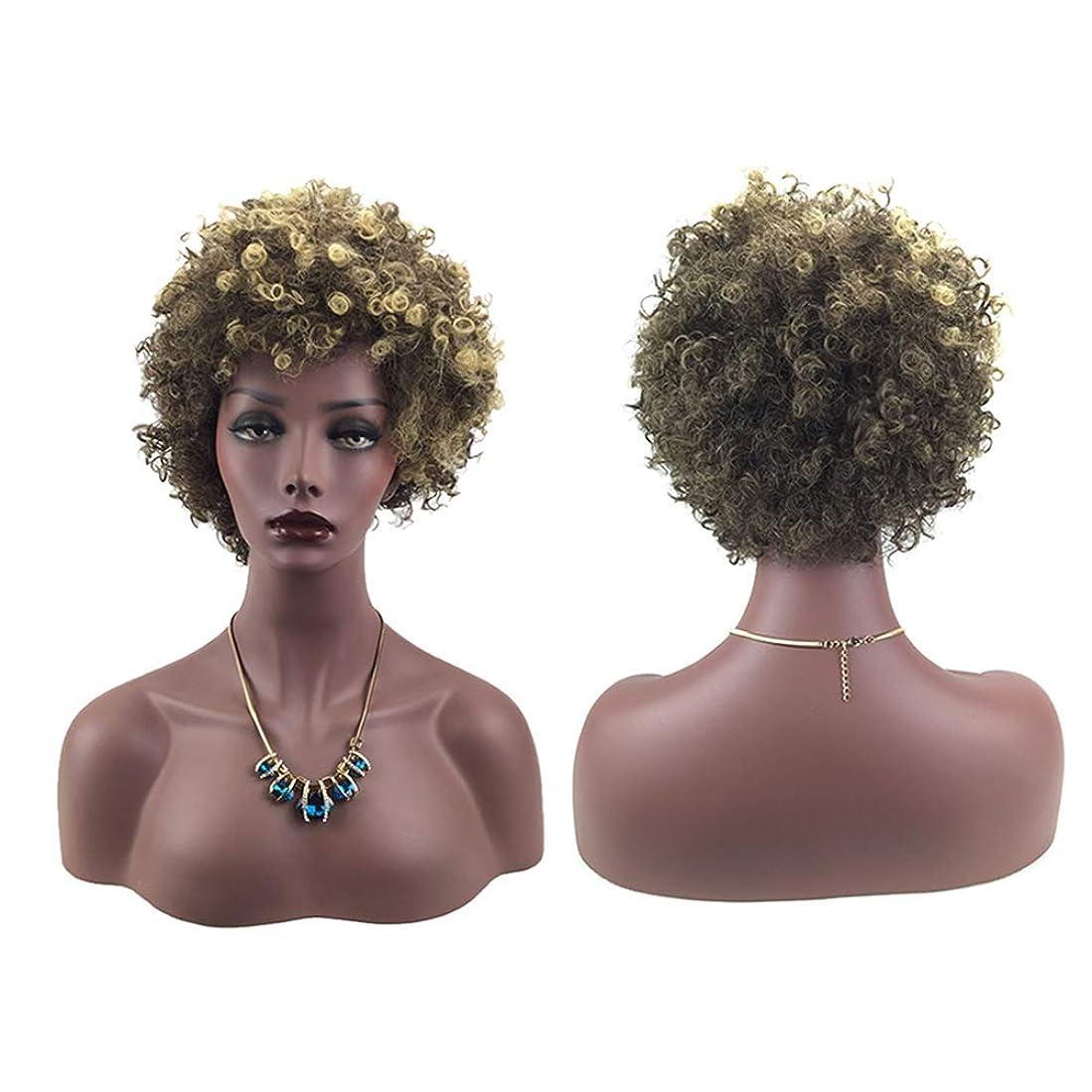 暴徒ボットであること女性ミニカーリーファッションヘアウィッグ自然に見える絶妙な弾性ネットウィッグカバー(66162)