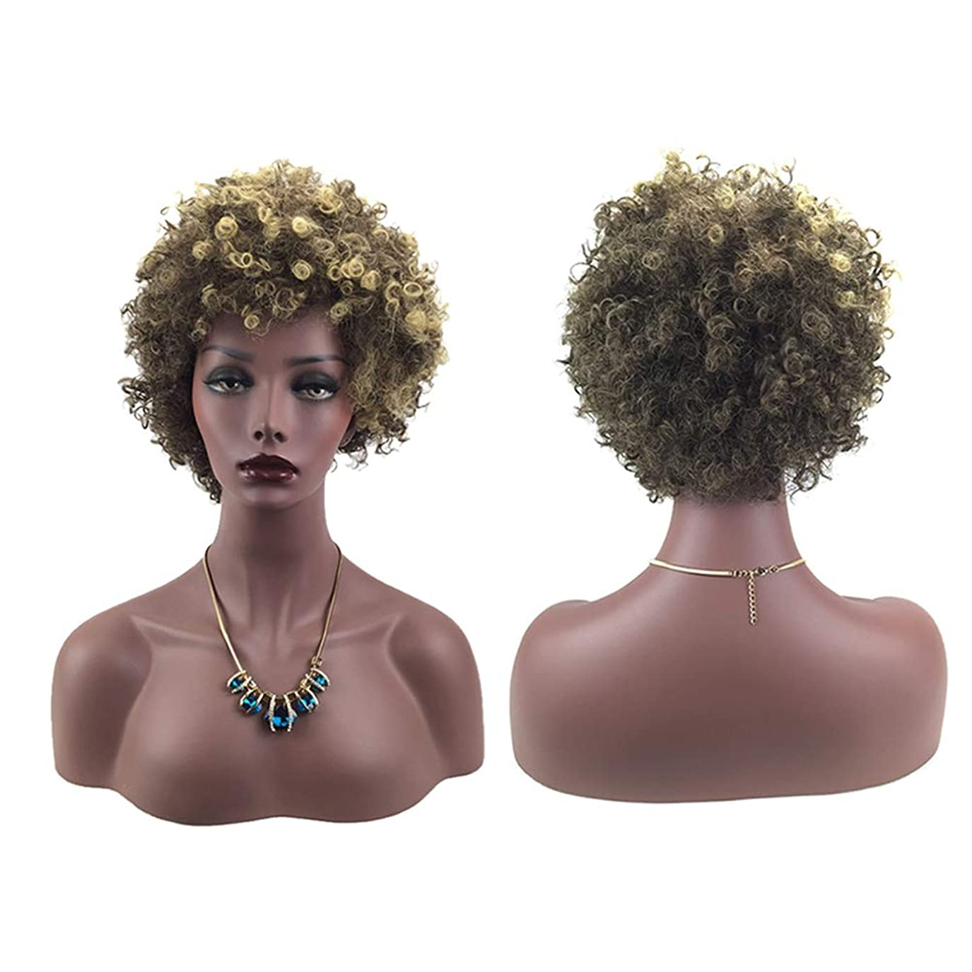 驚くばかりホバートスタジオ女性ミニカーリーファッションヘアウィッグ自然に見える絶妙な弾性ネットウィッグカバー(66162)