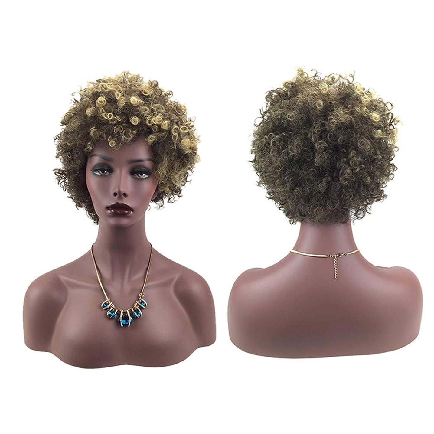 節約伝染性ドール女性ミニカーリーファッションヘアウィッグ自然に見える絶妙な弾性ネットウィッグカバー(66162)