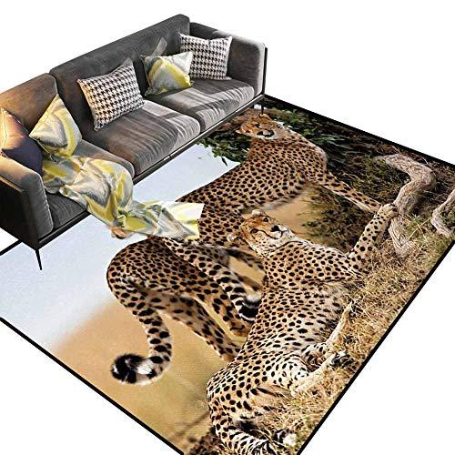 JiuYIBB - Alfombras de salón a la moda, diseño abstracto, color morado, azul y blanco para el hogar, cama, sala de estar, poliéster y mezcla de poliéster, Estilo-03, 4'x 6'
