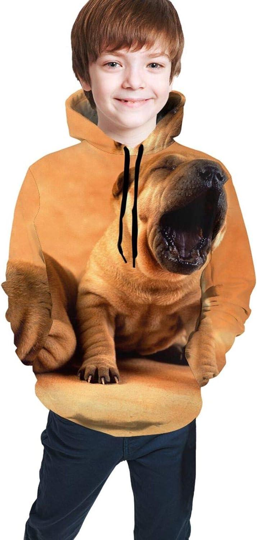 LINCHENC Boys Girls Hoodie, Shar Pei Dog Unisex 3D Printing Teenager Sweatshirt Kids Children's Sweater for Age 7-20
