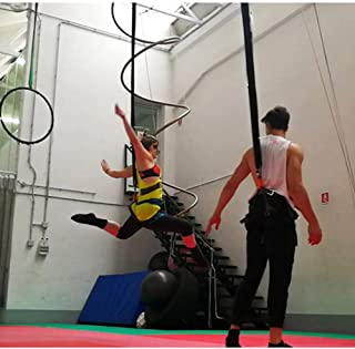 Best 4d pro bungee sling trainer Reviews