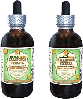Kalanchoe Pinnata (Bryophyllum Pinnatum) Glycerite, Dried Leaves and Stems Alcohol-Free Liquid Extract (Brand Name: HerbalTerra, Proudly Made in USA) 2x2 fl.oz (2x60 ml)