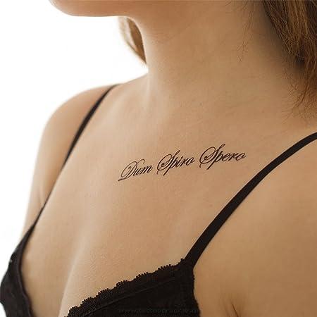 Sprüche latein tattoovorlagen ▷ 1001+