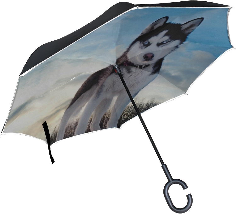 Rh Studio Ingreened Umbrella Dog Husky Look Spotted Muzzle Large Double Layer Outdoor Rain Sun Car Reversible Umbrella