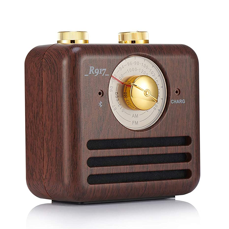 Retro FM Radio Bluetooth Speaker, Portable Walnut Wireless, with Lights, Deep bass and Clear Sound, Suitable for Family Outdoor