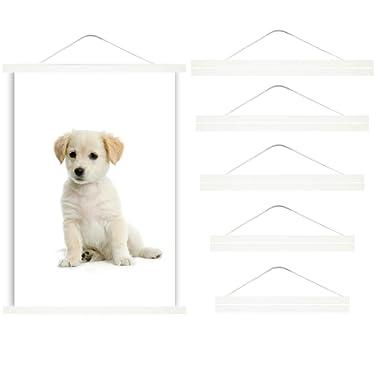 DEESHE Magnetic Poster Hanger Frame, Picture Holder for Artwork, Paintings, Photos, Maps(White, 24inch(60cm))