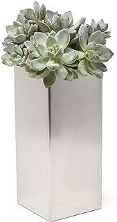Buhbo Modern Square Vase Planter 3.5