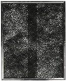 Broan-NuTone Broan Filter, 2-Pack