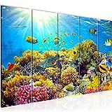 Bild Unterwasserwelt Korallen Kunstdruck Vlies Leinwandbild