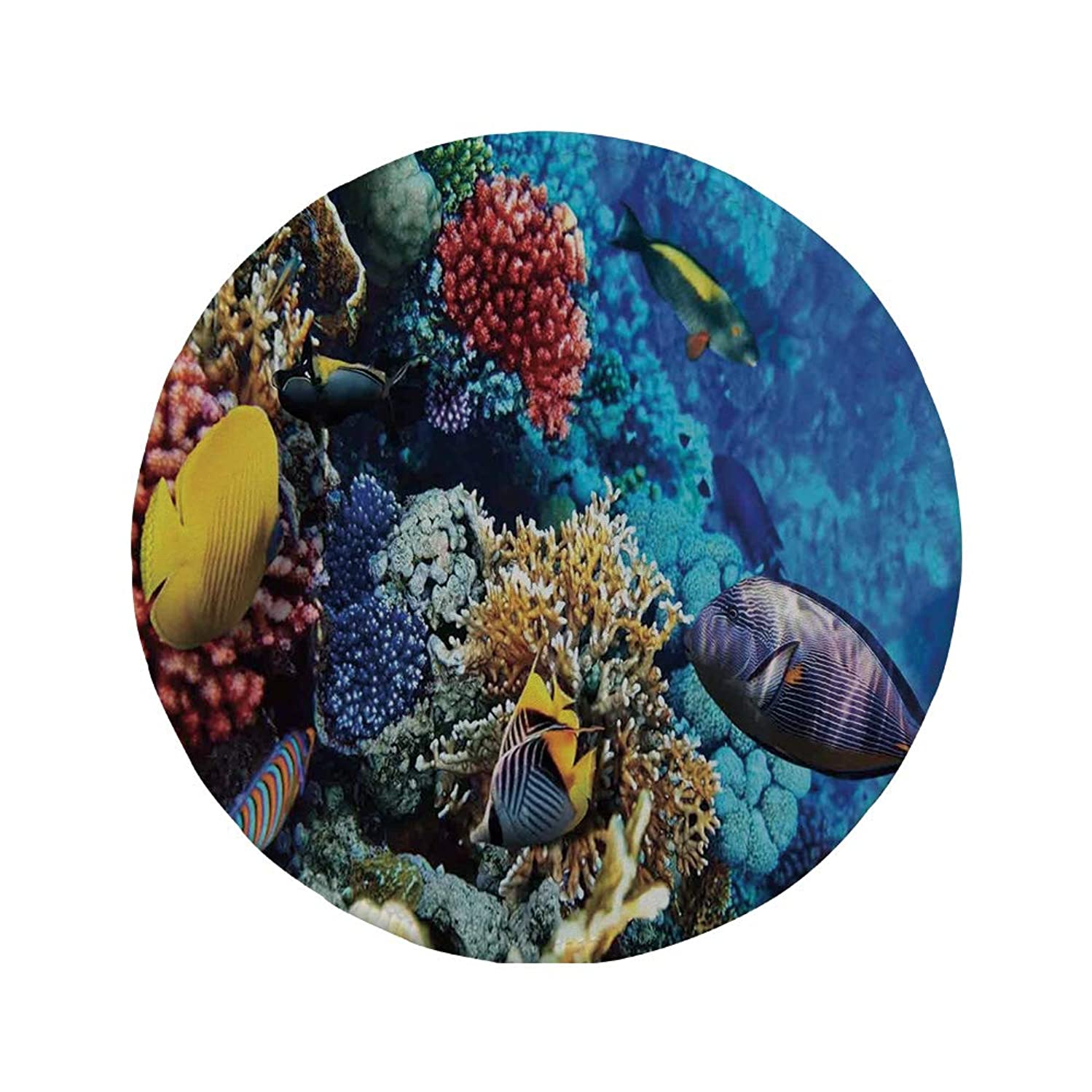 Non-Slip Rubber Round Mouse Pad,Ocean,Wild Sea Life Colorful Corals and Fishes in Egyptian Sea Sharm El Sheikh Africa Image,Multicolor,11.8