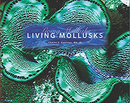 Living Mollusks