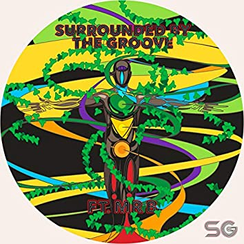Surrounded by the Groove (feat. Mr B)