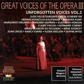 Unforgotten Voices (Vol.2)
