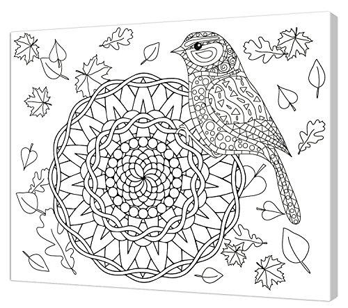 Pintcolor 7806.0 châssis avec Toile imprimée à colorier, Bois de Sapin, Blanc/Noir, 40 x 50 x 3,5 cm