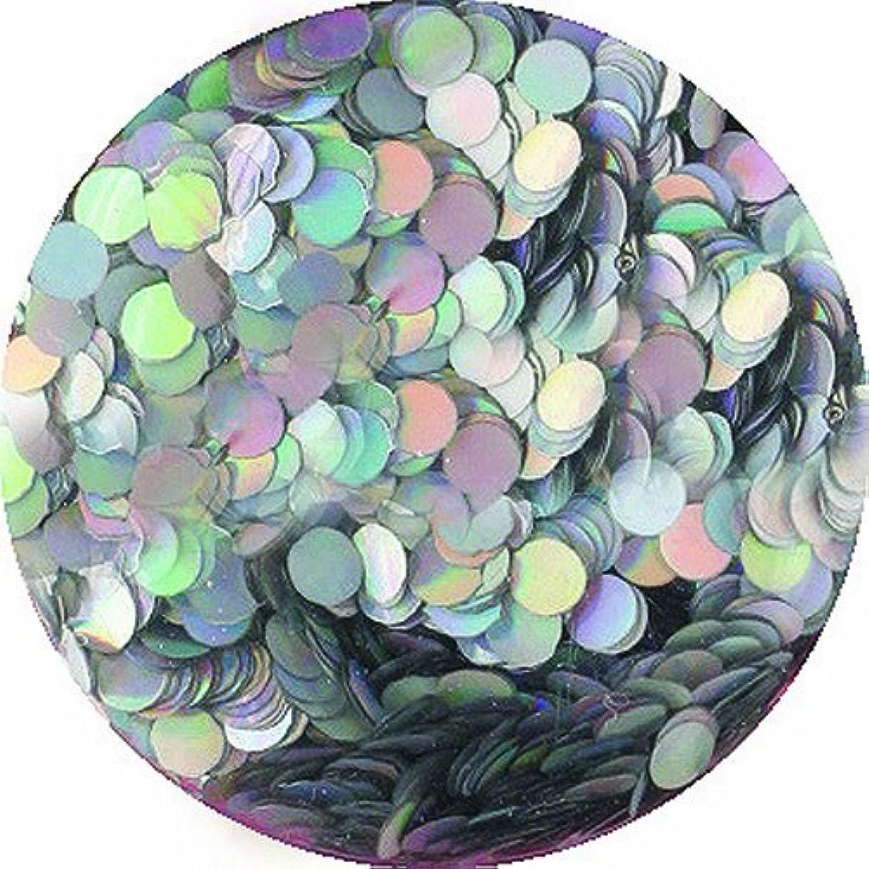 白菜煩わしいフレアビューティーネイラー ネイル用パウダー 黒崎えり子 ジュエリーコレクション ホロゴールド丸1mm