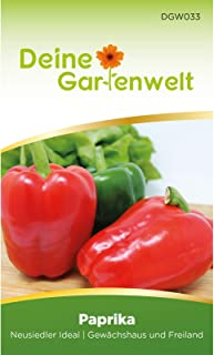 Snackpaprika Neusiedler Ideal   Paprikasamen   Samen für Paprika   Paprikasaat   Saatgut