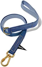 product image for Found My Animal ICE Blue to Regatta Cotton Webbing Dog Leash, Standard