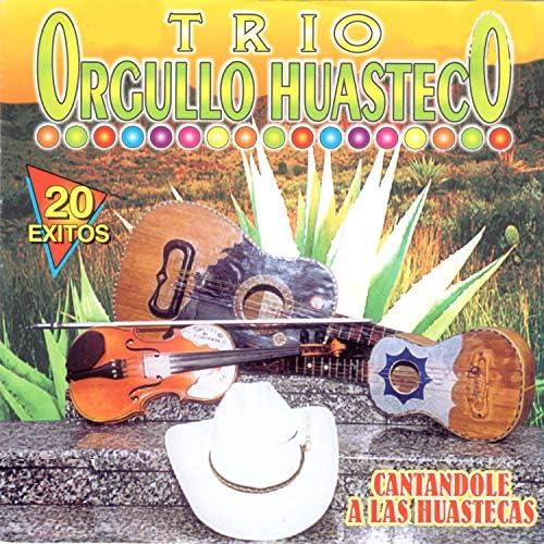 Trio Orgullo Huasteco