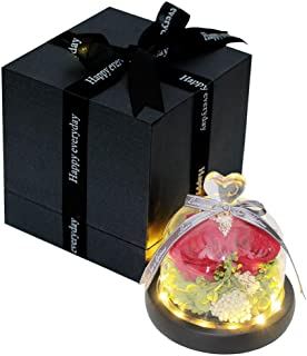 LEHOPE Handmade Preserved Flower Rose in Glass Dome with LED Light, Enchanted Rose Box for Her