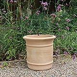 Kreta Keramik | Macetero de terracota resistente a las heladas, para plantas de interior y exterior, Canna (35 cm)