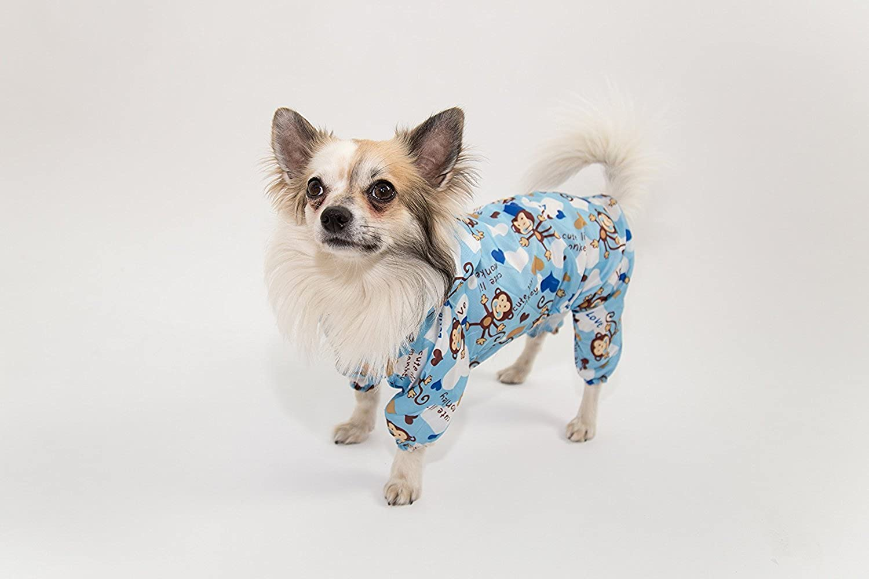 Pet Dog Clothes Raincoats Small dogs coats (M)