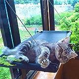 SABAN Ventana para gatos   Hamaca para gatos   Hamaca para gatos de hasta 31 kg   Tumbona para gatos   Ventana Lounger gatos con 4 grandes ventosas con un peso