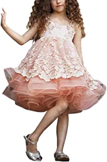 Flower Girl Dress for Wedding Stylish 3D Floral Appliqued Kids Pageant Ball Gowns