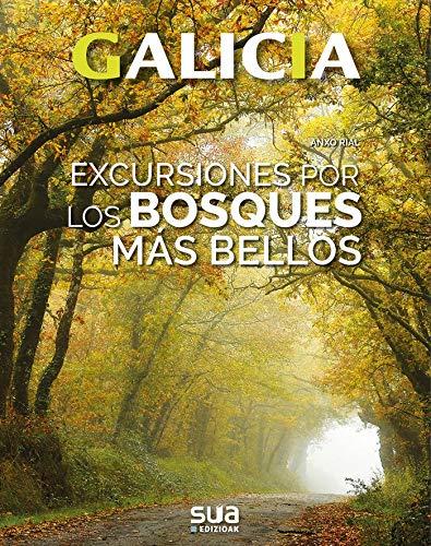 Excursiones por los bosques mas bellos: 3 (Galicia)