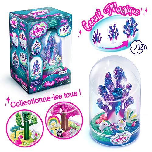 Canal Toys So Magic-Large Terrarium-Under The Sea, MSG 011