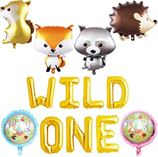 HEETON Wild One Balloons, Woodland Fox Balloons, Feather Arrow Teepee Boho Tribal Party Banner, Wild One Baby Shower 1st Birthday Party Supplies Decorations