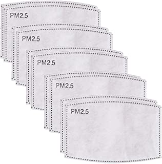 10 Pieces PM2.5 Mask Filters Used for Earloop Cloth Cleaning Respirators Masks for cleaning,allergies,dust,flu,smog,smoke protection,medical,PM2.5,mowing lawn,pollen (PM2.5 Filter)
