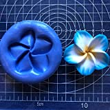 Plumeria Flower DIY 3D Silicone Mold Making Ice Blocks Candy Fondant Chocolates Soaps Cakes Mousse Jelly Candles Decorating Cupcake Tools 5cm