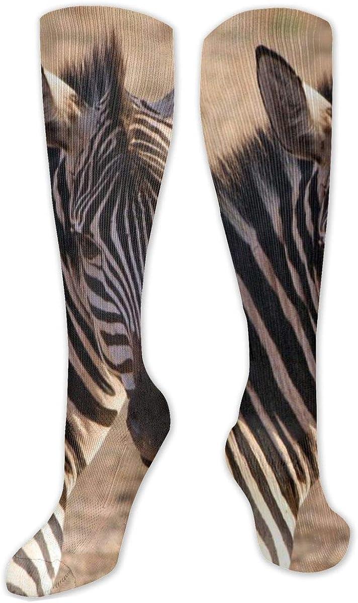 African Grassland Wildlife Zebra Knee High Socks Leg Warmer Dresses Long Boot Stockings For Womens Cosplay Daily Wear