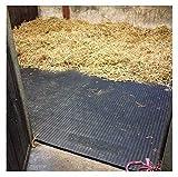 ARKMat Lightweight EVA Horse Stable Floor Mat | 24mm Thick | 6 x 4ft