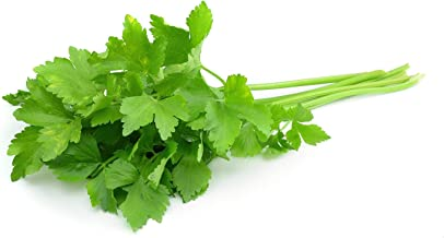 Amazon.es: semillas de cilantro