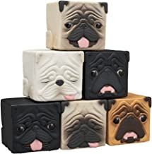 Kitan Club Hako Pug Cube Toy - Blind Box Includes 1 of 6 Collectible Dog Figurines - Stackable Desk Ornament for Kids and Adults - Authentic Japanese Design - Made from PVC Material, Premium Quality