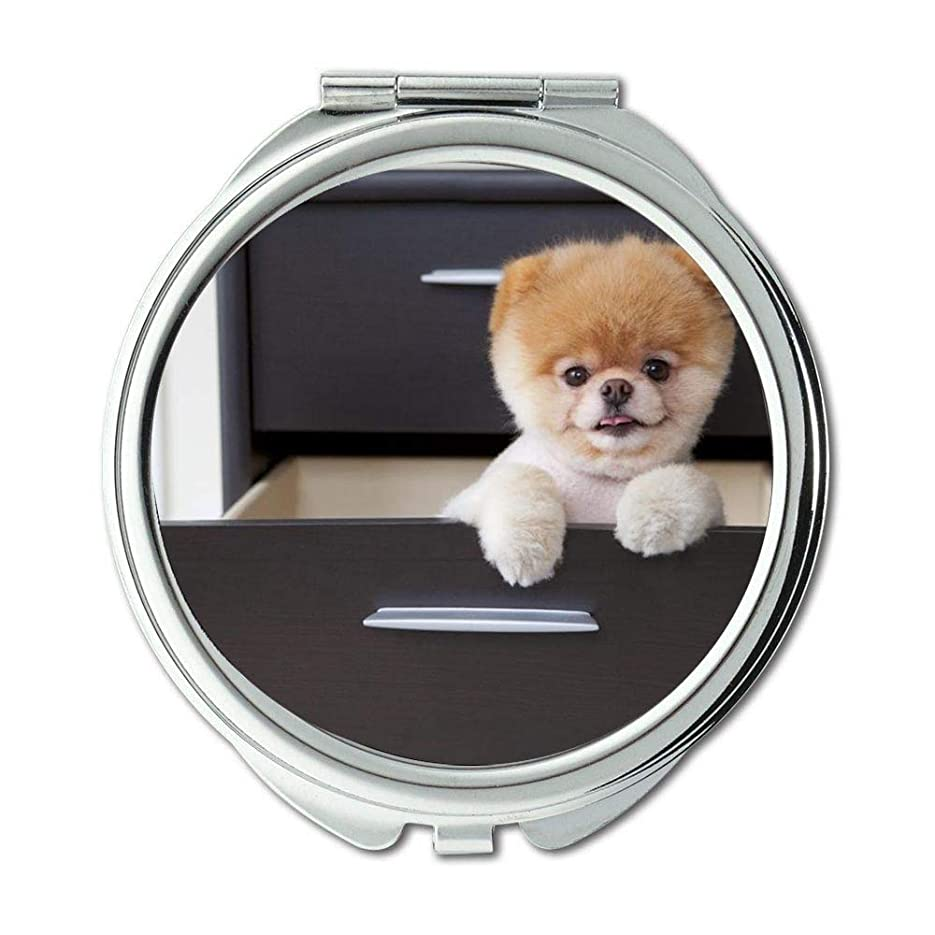 プロットインポート見積りミラー、スモールミラー、子犬犬のブードッグ、ポケットミラー、1 X 2X 倍の拡大鏡